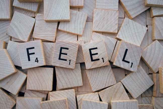 pexels feel